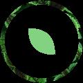 Schnell-Haustechnik-icon-natur